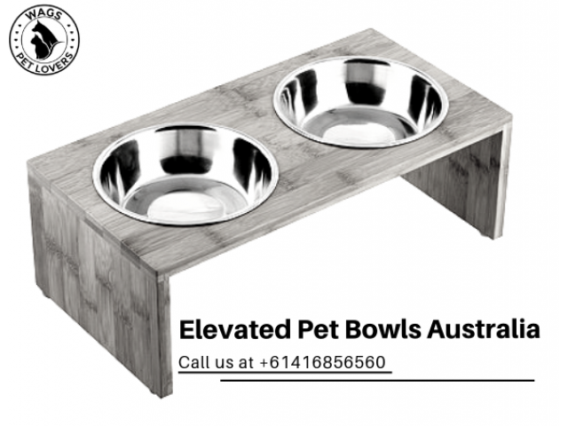 Buy the Best Elevated Pet Bowls in Australia - 1