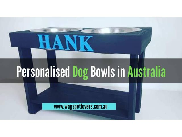 Looking for the Personalised Dog Bowls for your Pets ? - 1