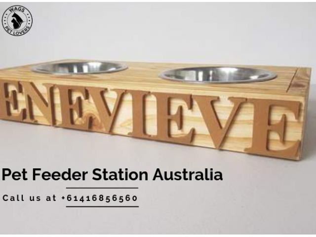 Shop at Wags Pet Lovers for the Best Pet Feeders Station in Australia - 1
