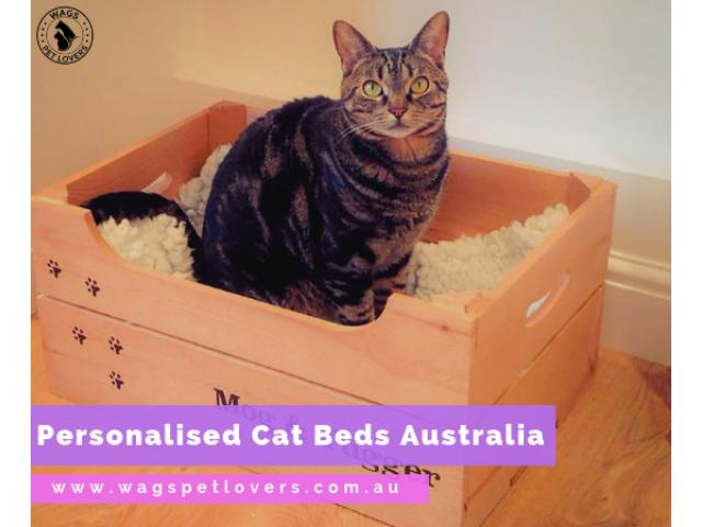 Shop for Personalised Cat Beds in Australia - 1